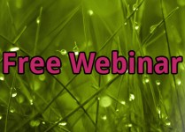 Regain Your Freedom Over Food – Free Webinar